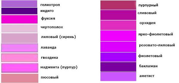 c-chem-nosit-fioletovuy-sumku-37